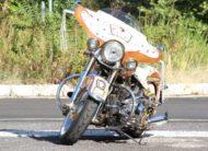 Harley-Davidson 1450 Softail DeLuxe