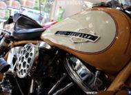 Harley-Davidson Panhead Duo Glide